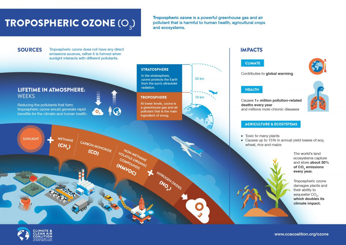 Tropospheric ozone emissions sources and impacts