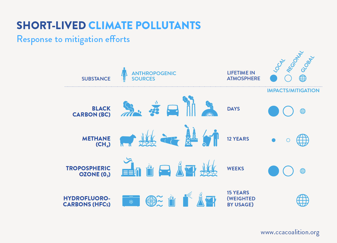 Short-lived climate pollutants: Response to mitigation efforts