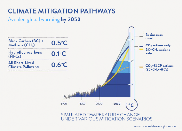 Climate Mitigation Pathways