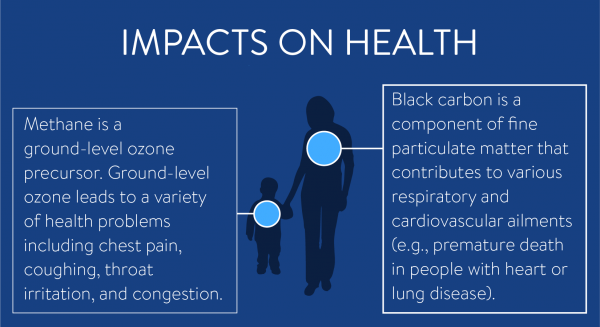 Methane and Black Carbon Impacts on Health