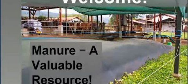 Manure: a valuable resource! Introduction and scope of manure management