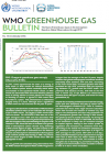 World Meteorological Organization greenhouse gas bulletin (No.12)