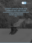 Expert Group on Black Carbon and Methane; Summary of Progress and Recommendations