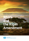 Africa and the Kigali Amendment