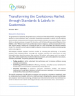Transforming the Cookstoves Market through Standards & Labels in Guatemala