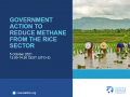 Government action to reduce methane from rice production (webinar)