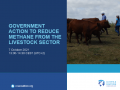 Government Action to Reduce Methane from the Livestock Sector