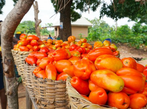 Roadside fruit & vegetable market in Nigeria