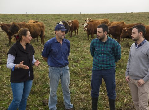 Climate Smart Livestock Production Project in Uruguay