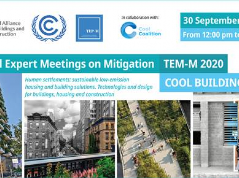 Technical Expert Meetings on Mitigation 2020: Cool Buildings For All