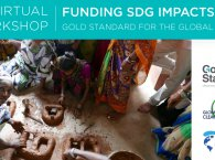 Virtual Workshop: Gold Standard for the Global Goals