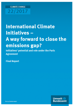 International Climate Initiatives – A way forward to close the emissions gap?