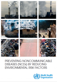 Preventing non-communicable diseases (NDCs) by reducing environmental risk factors