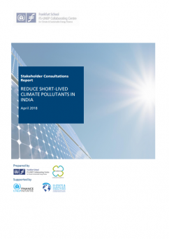 Stakeholder Consultations Report: Reduce Short-Lived Climate Pollutants in India