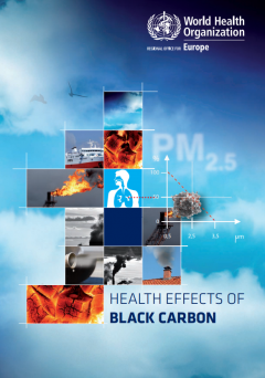 Health effects of black carbon