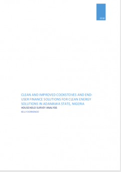 End user solutions for clean energy - Household survey analysis