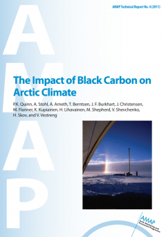The Impact of Black Carbon on Arctic Climate