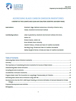 2018 Annual Science Update - Black Carbon Briefing Report