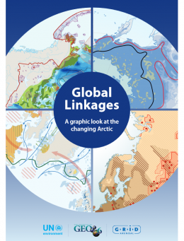 Global linkages: A graphic look at the changing Arctic