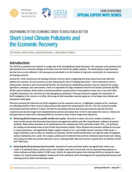 Short-lived climate pollutants and the economic recovery