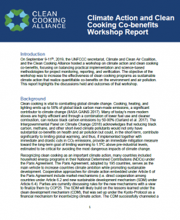 Climate Action and Clean Cooking Co-benefits Workshop Report